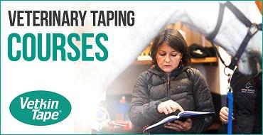 vetkintape-homepage-courses